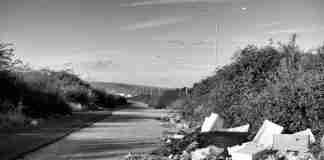 La zona industriale del porto di Gioia Tauro
